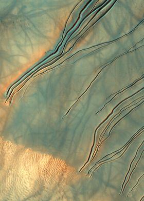 Mars Dune Gullies