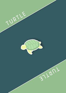 Turtle Minimanimal
