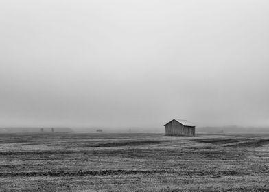 Barnss On A Misty Field
