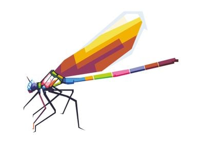 colorful dragonfly WPAP