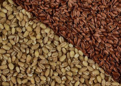Seeds I