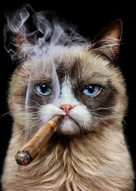 Disgruntle Cat with Cigar