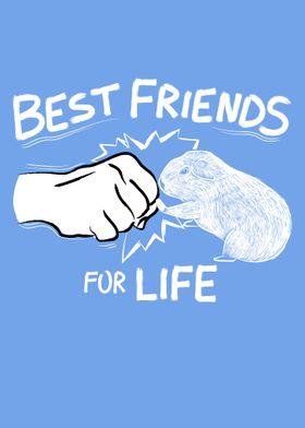 Guinea Pig Best Friends