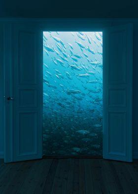 Doors View