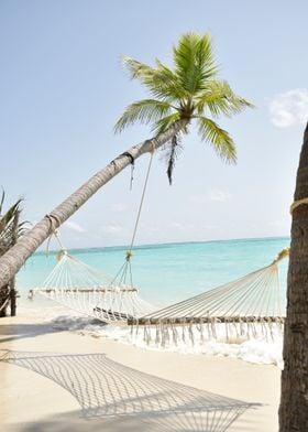 Palm Beach with hammock