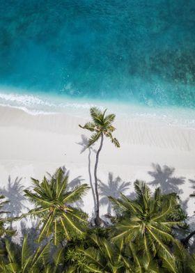 Palm Beach Sea Skyview