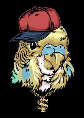 Hip Hop Budgie