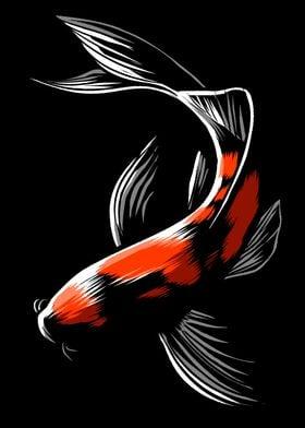 Black Japanese carp
