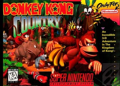 DONKEY KONG COUNTRY COVER