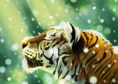 Tiger and snowflakes