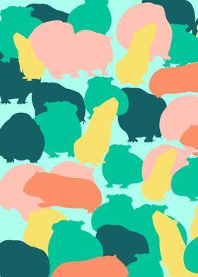 Guinea Pig Pattern Color