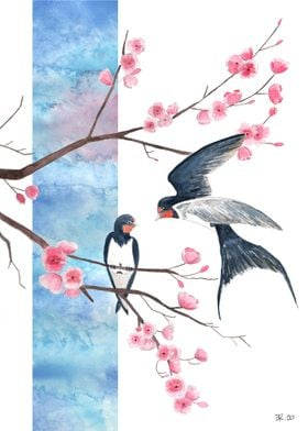 Swallow on sakura