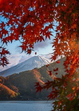 Fuji San autumn