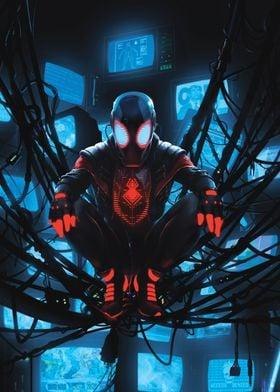 Network Spider
