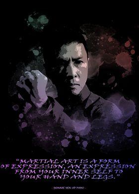 Donnie Yen IP MAN