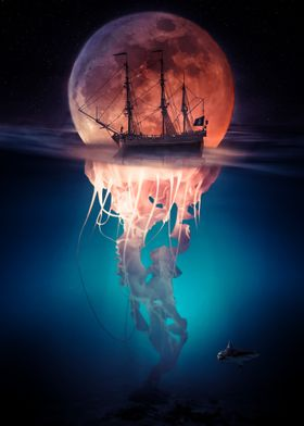 Pirate Jellyfish