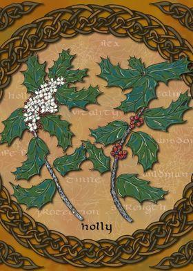 Celtic Holly