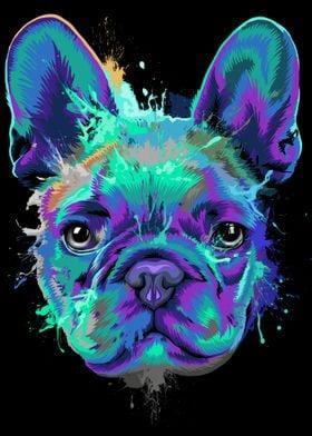 French Bulldog Splash