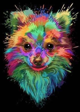 Pomeranian Splash Art