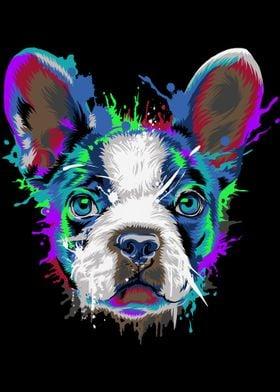 Boston Terrier Splash