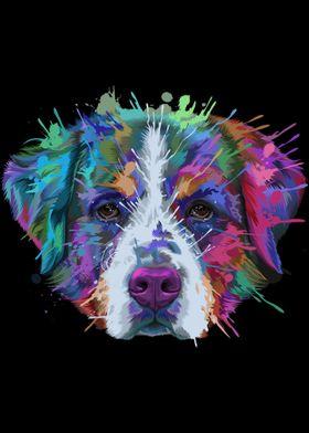 Bernese Mountain Dog Art