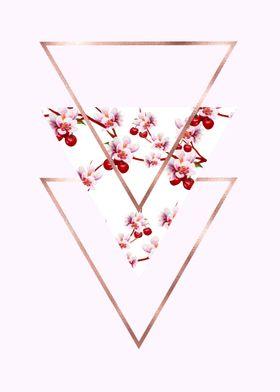 Cherry Polygonal 3