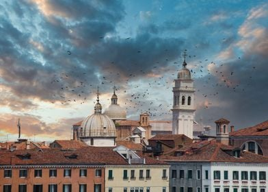 Domes on Venice Towers