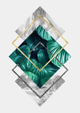 botanical polygon III