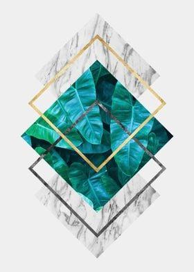 botanical polygon IV