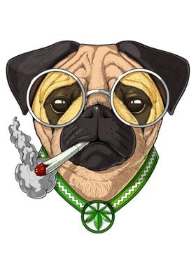 Pug Dog Smoking Weed