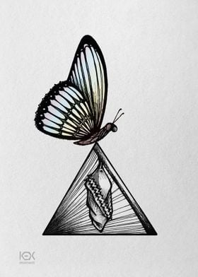 Butterfly on Prism Cocoon