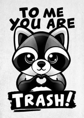 Raccoon trash lover