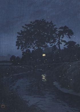 Fireflies Near River
