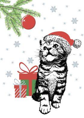 Kitten cat with santa hat