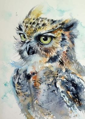 Angry Owl Harry Potter
