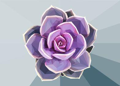 Geometrical Purple