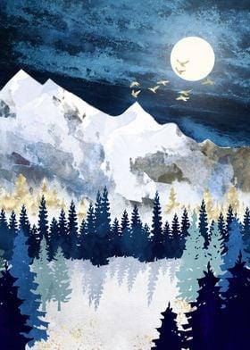 Moonlit Snow