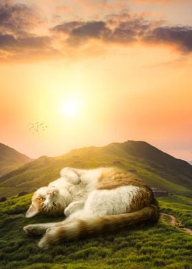 Giant Cat Relaxing
