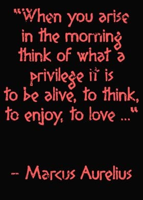 Marcus Aurelius Morning