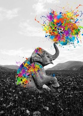 Elephant play with paint