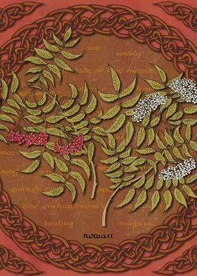 Celtic Rowan Tree