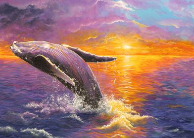 Sunset with humpback whale