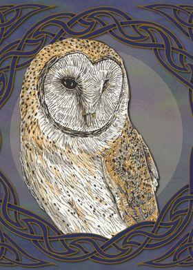 Celtic Barn Owl