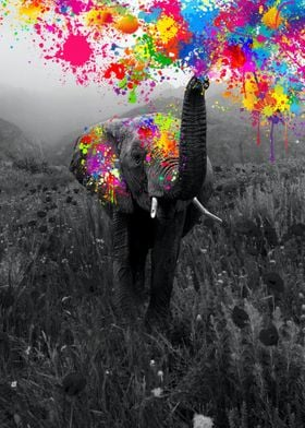 Elephant playing paint