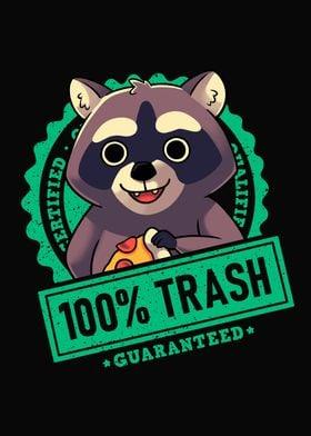 Trash Panda Raccoon Seal