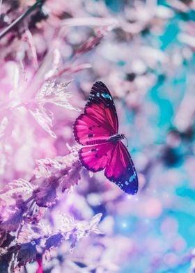 Pink butterfly blue sky