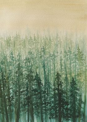 In the Golden Mist