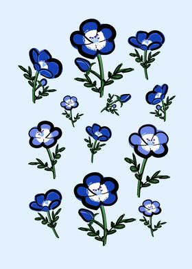 Nemophila Blossom