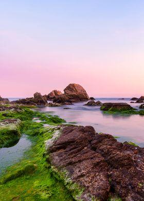 Violet sea sunset beach