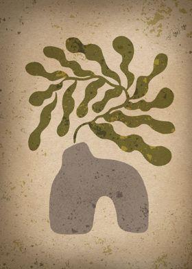 Matisse Plant